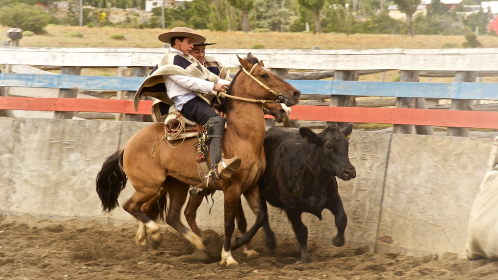 Rodeo_15__MG_6673