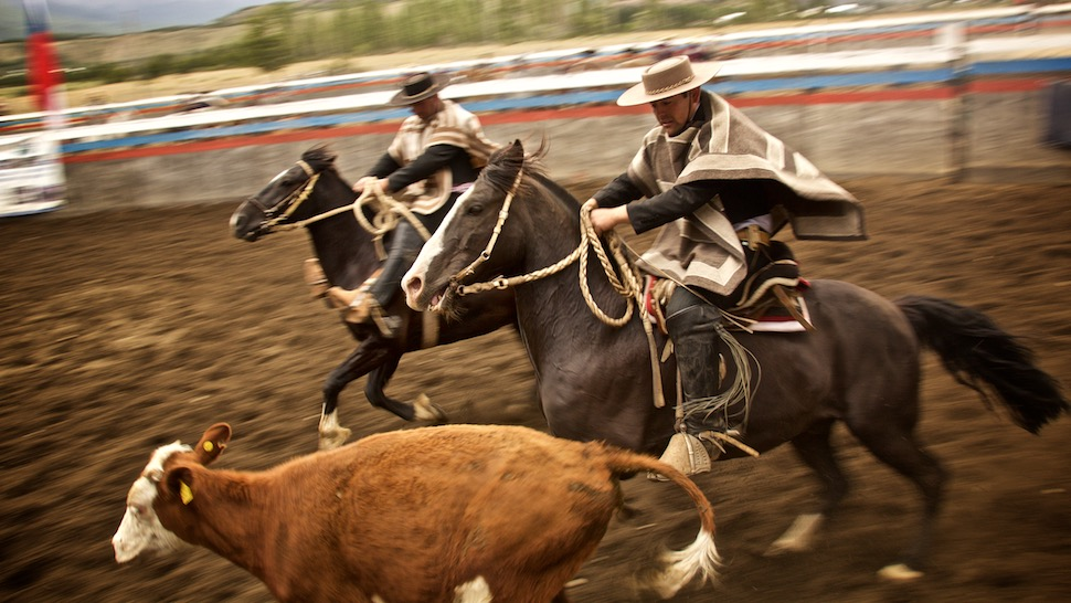 Rodeo_17__MG_6700