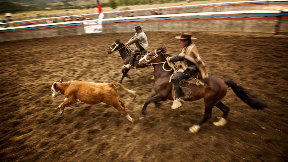 Rodeo_18__MG_6732
