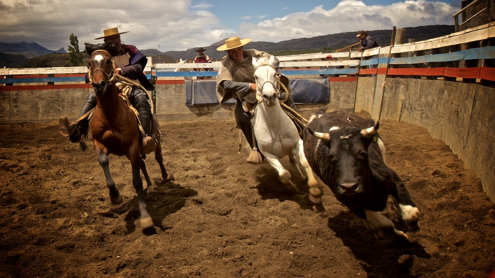 Rodeo_21__MG_6813